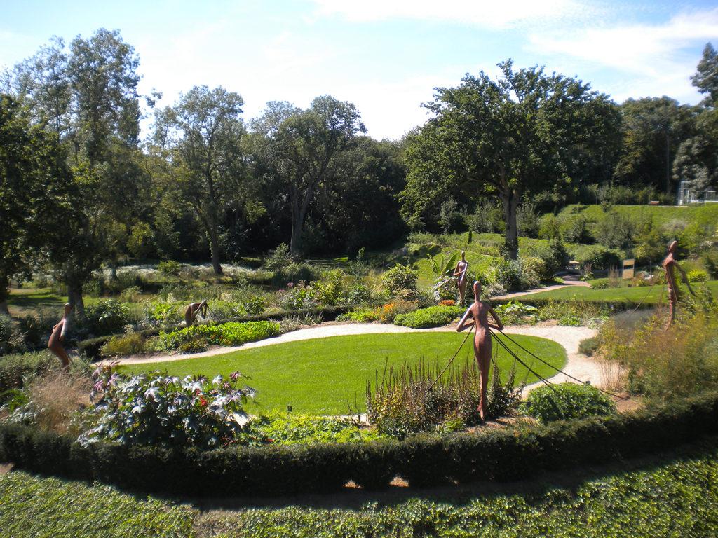 jardin-camifolia-49-chemille